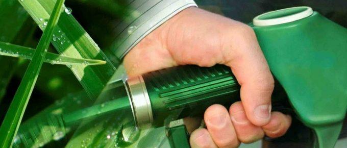 En mayo se definirán normas para producción de biocombustibles
